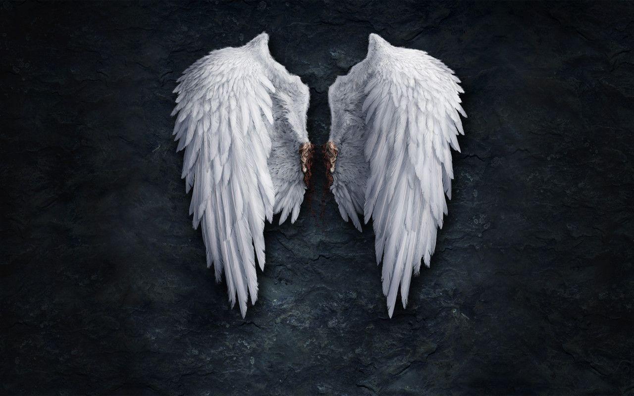 Free Angel Wallpapers Wallpaper 1280x800