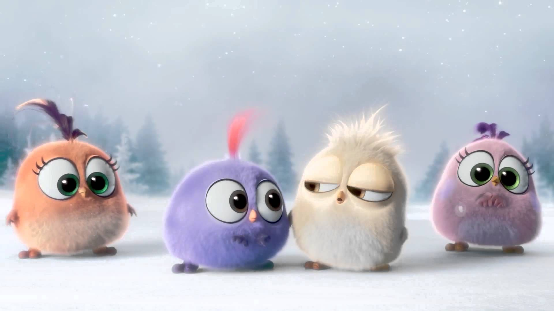 Angry Birds Hd Wallpapers Backgrounds Wallpaper 1920x1080