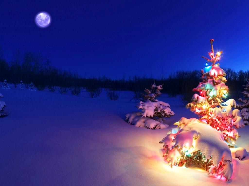 Free Christmas Wallpapers And Screensavers 1024x768