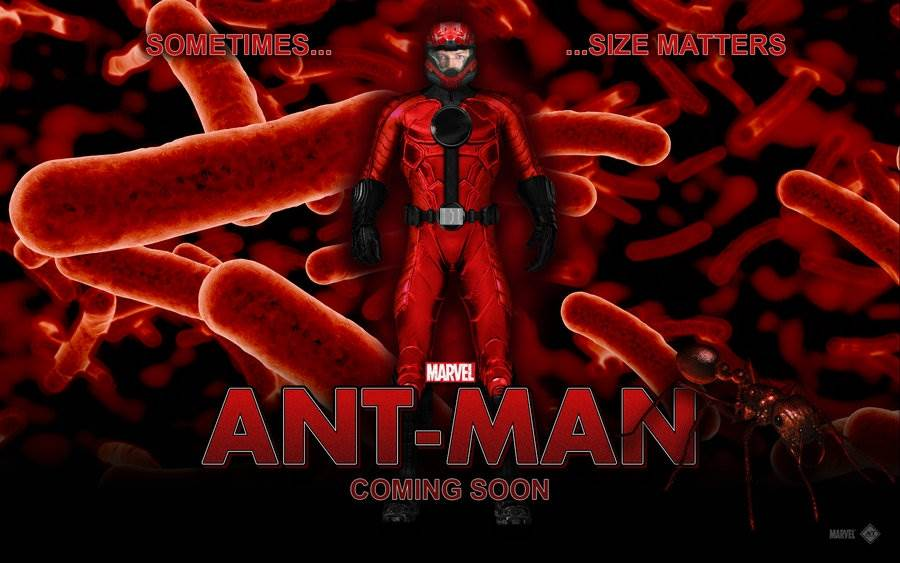 AntMan Computer Wallpapers, Desktop Backgrounds  ID 900x563