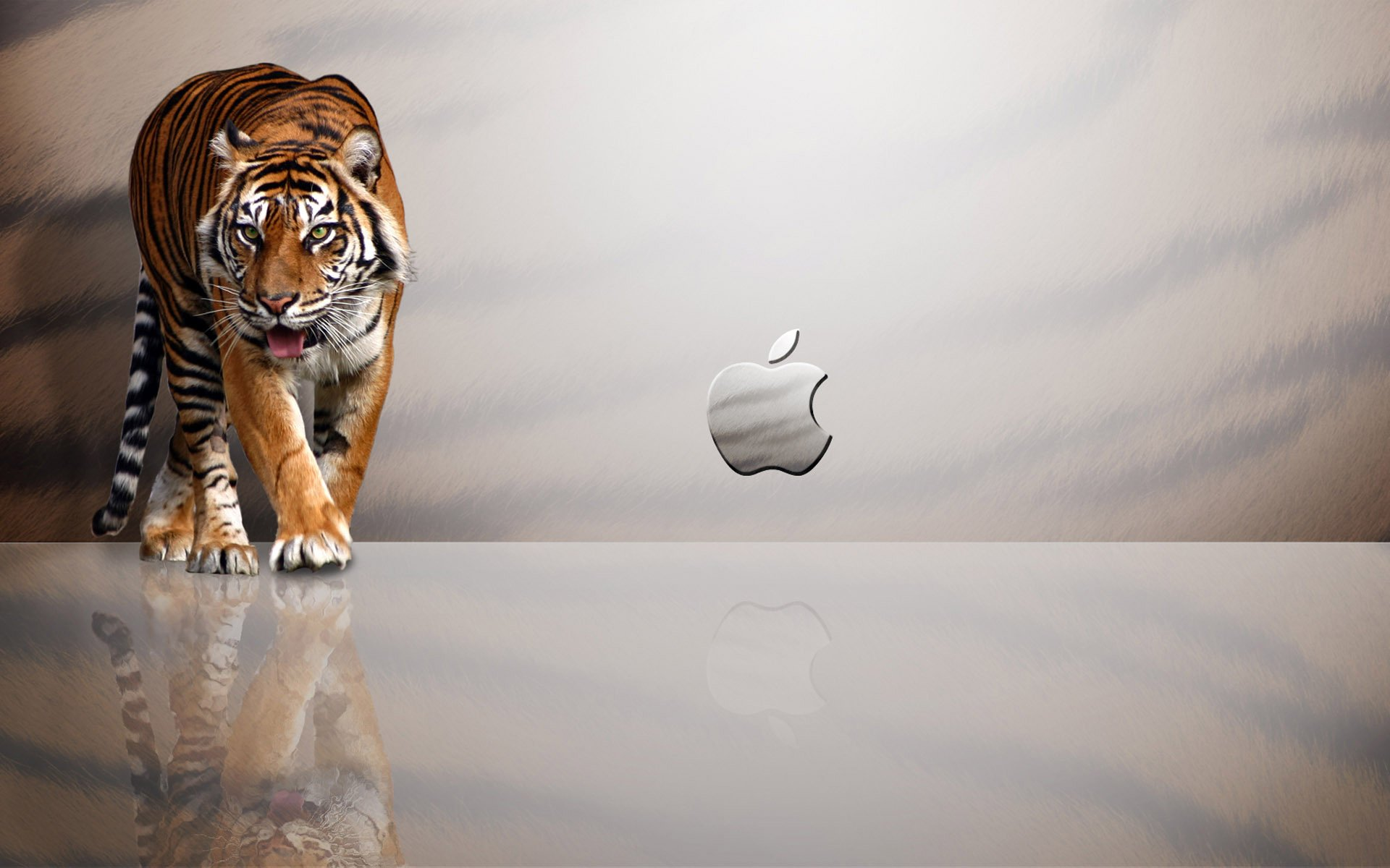 Mac OS X Snow Leopard Wallpaper Download 1920x1200