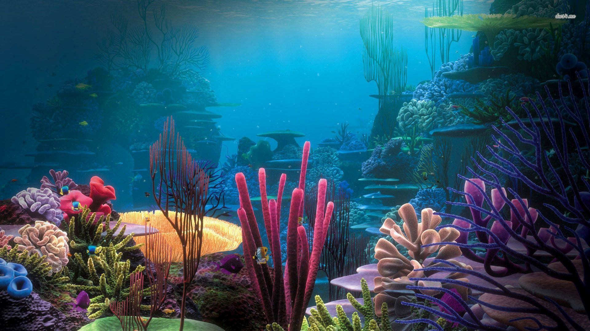 aquarium wallpaper 24 wallpapers