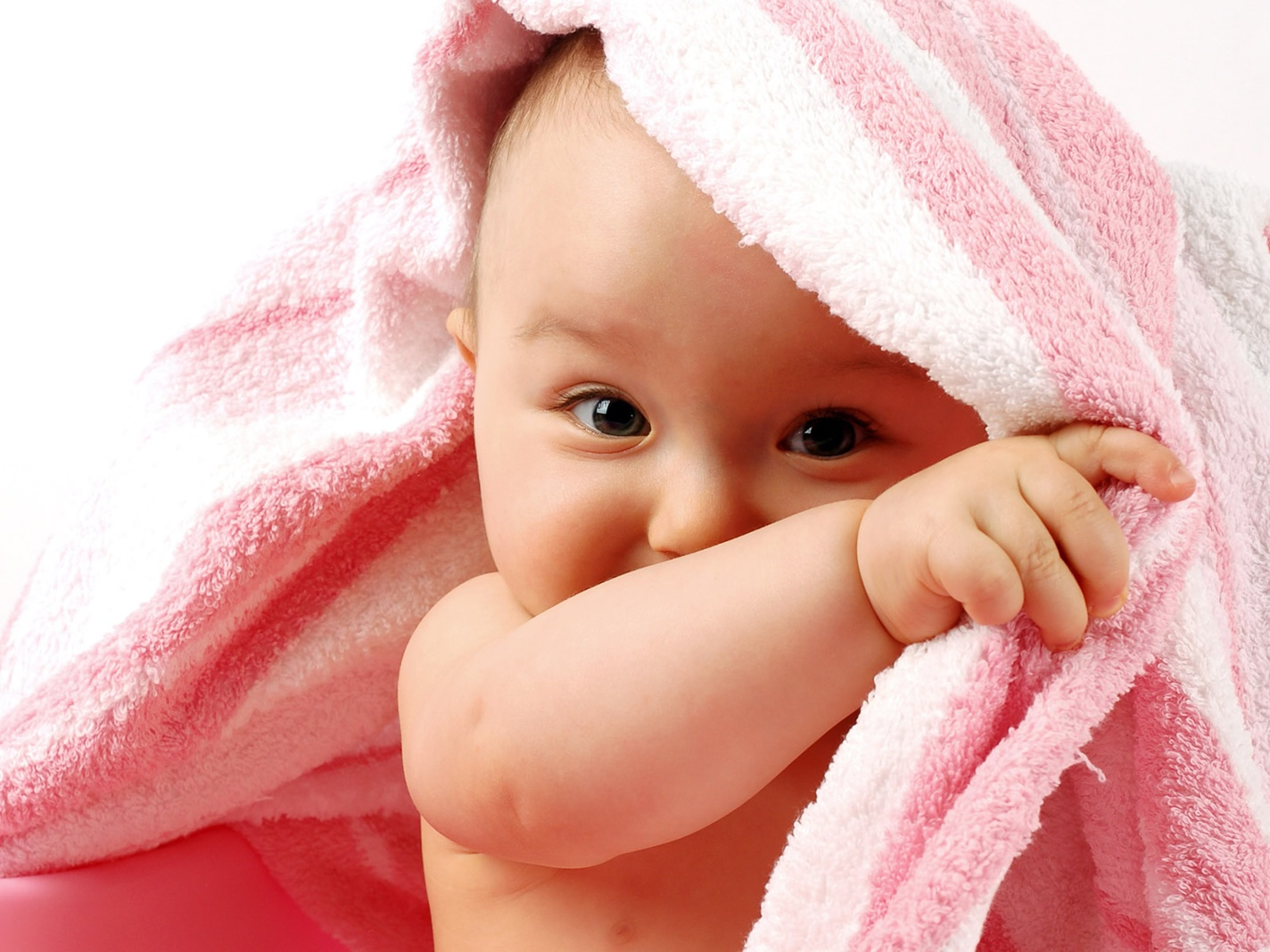 cute baby photos, download cute baby wallpapers, download free 1424x1068