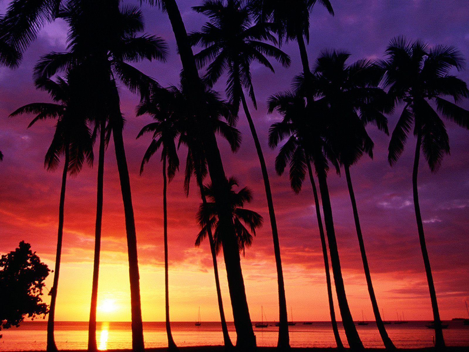 Beach Sunset Wallpaper 1600x1200