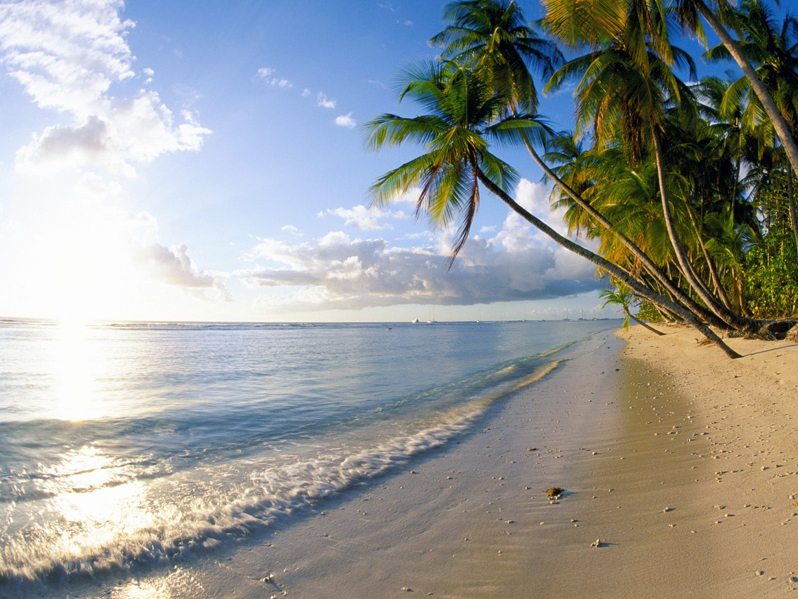beachwallpaper beach live wallpaper android apps on google play 1600x1200