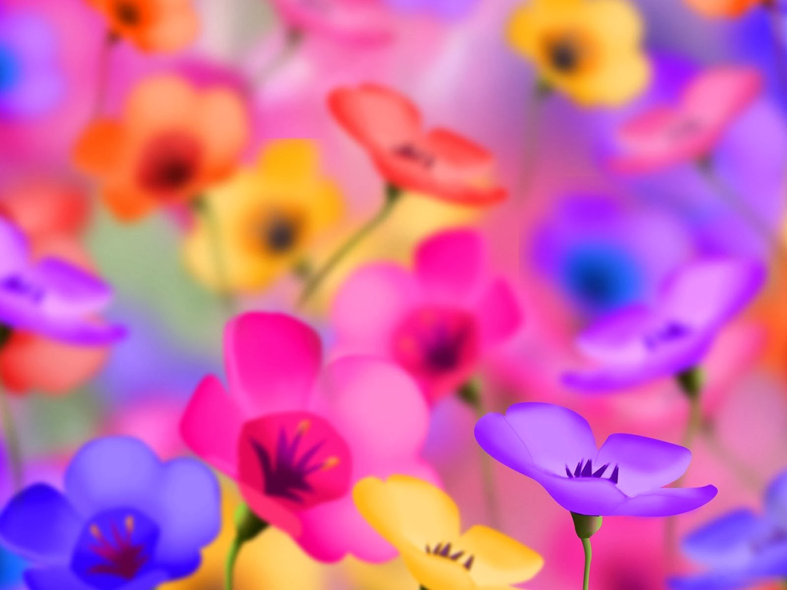 Beautiful Free HD Flower Wallpapers  DesignMaz 1600x1200