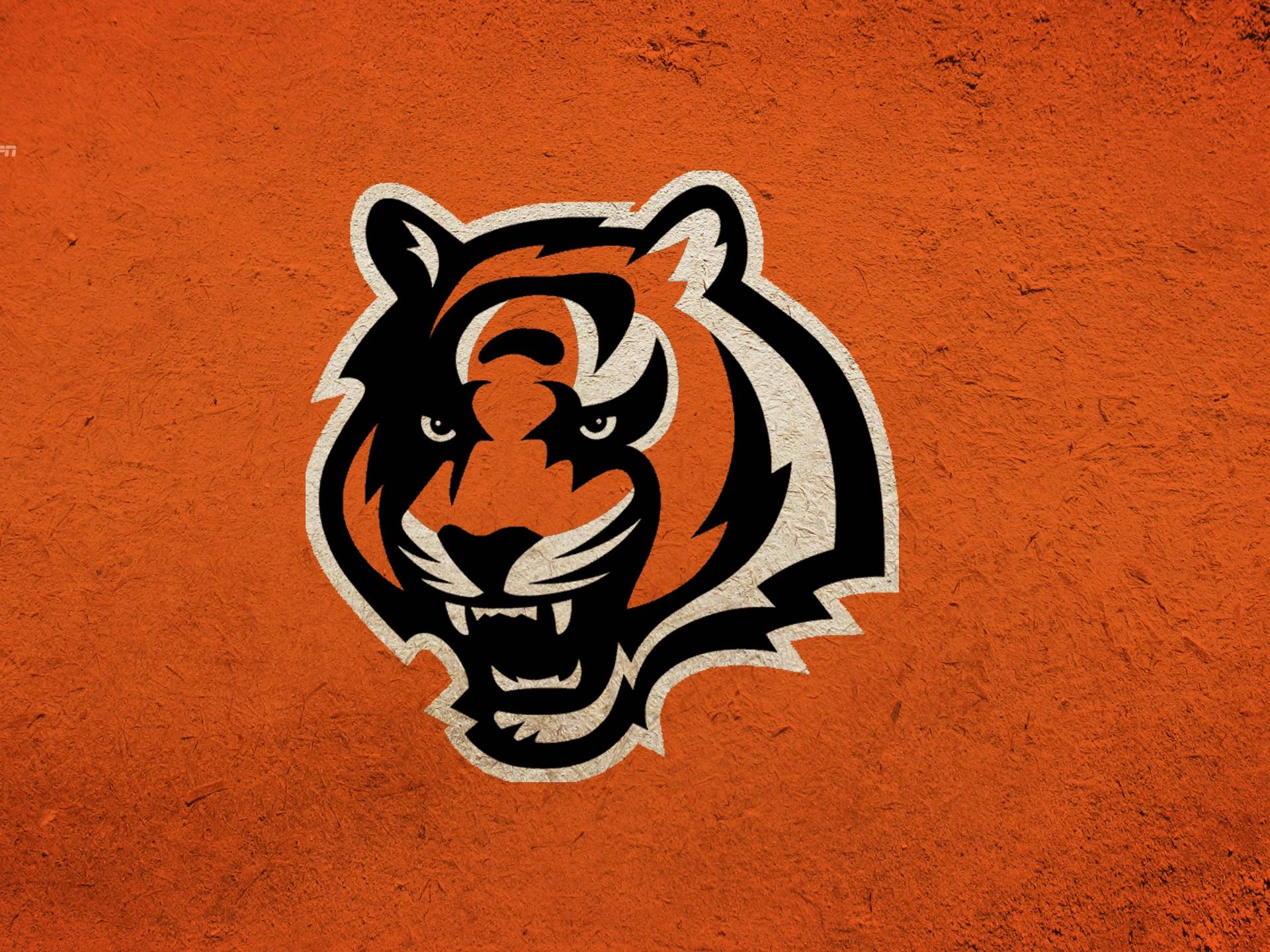City Wallpaper cincinnati  out these Bengals iPad wallpapers 1920x1440
