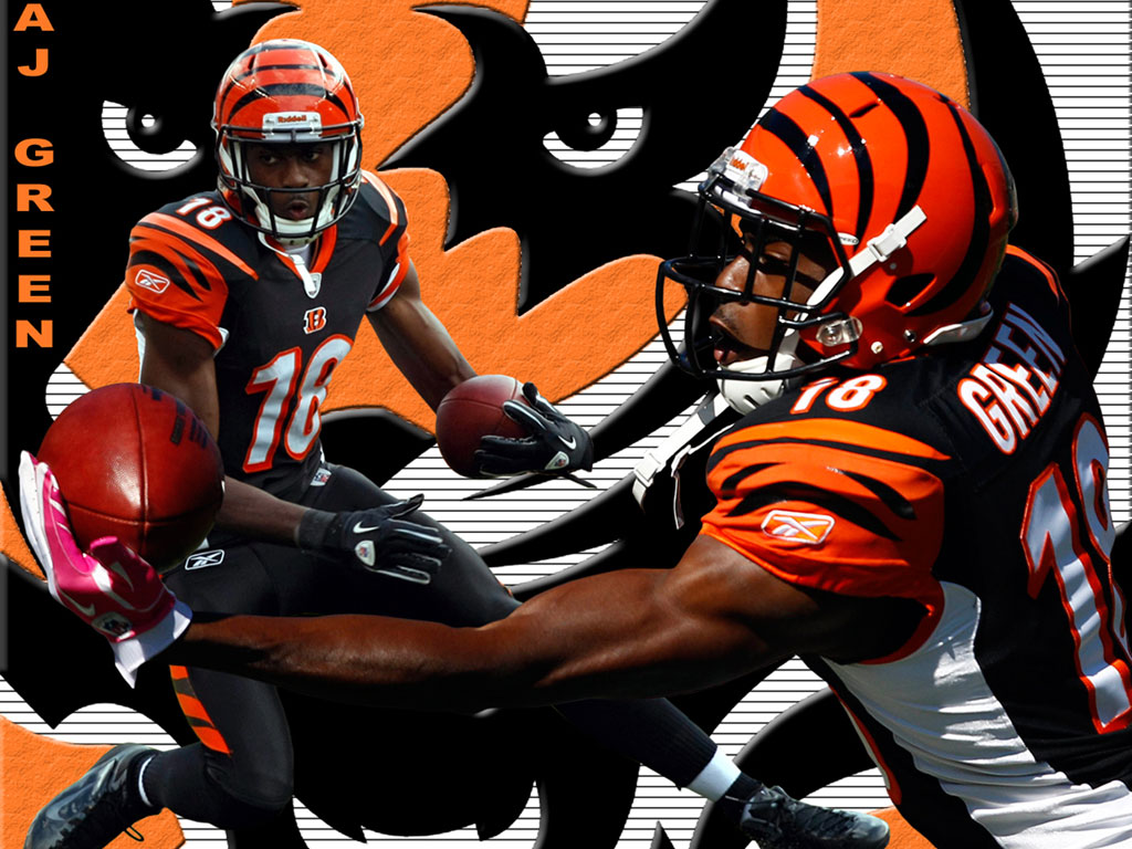 CINCINNATI BENGALS Nfl Football V Wallpaper 1024x768