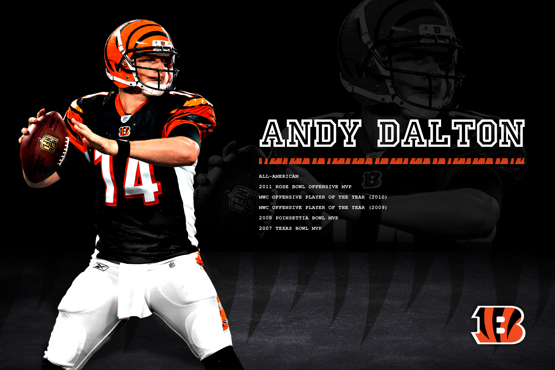Bengals Wallpapers Page  1920x1280