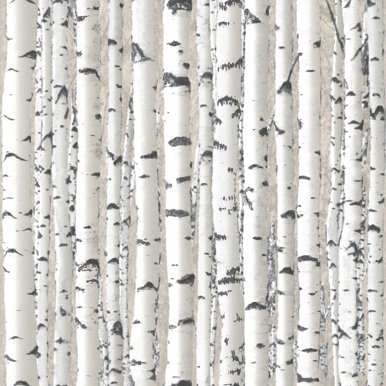 Birch Tree Wallpaper (11 Wallpapers) - Adorable Wallpapers