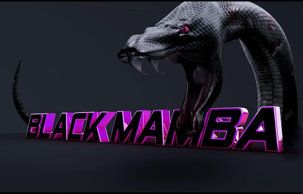 Free Black Mamba Snake Wallpaper APK Download For Android GetJar