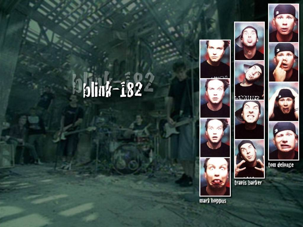 Blink  Desktop Wallpapers Group  1024x768