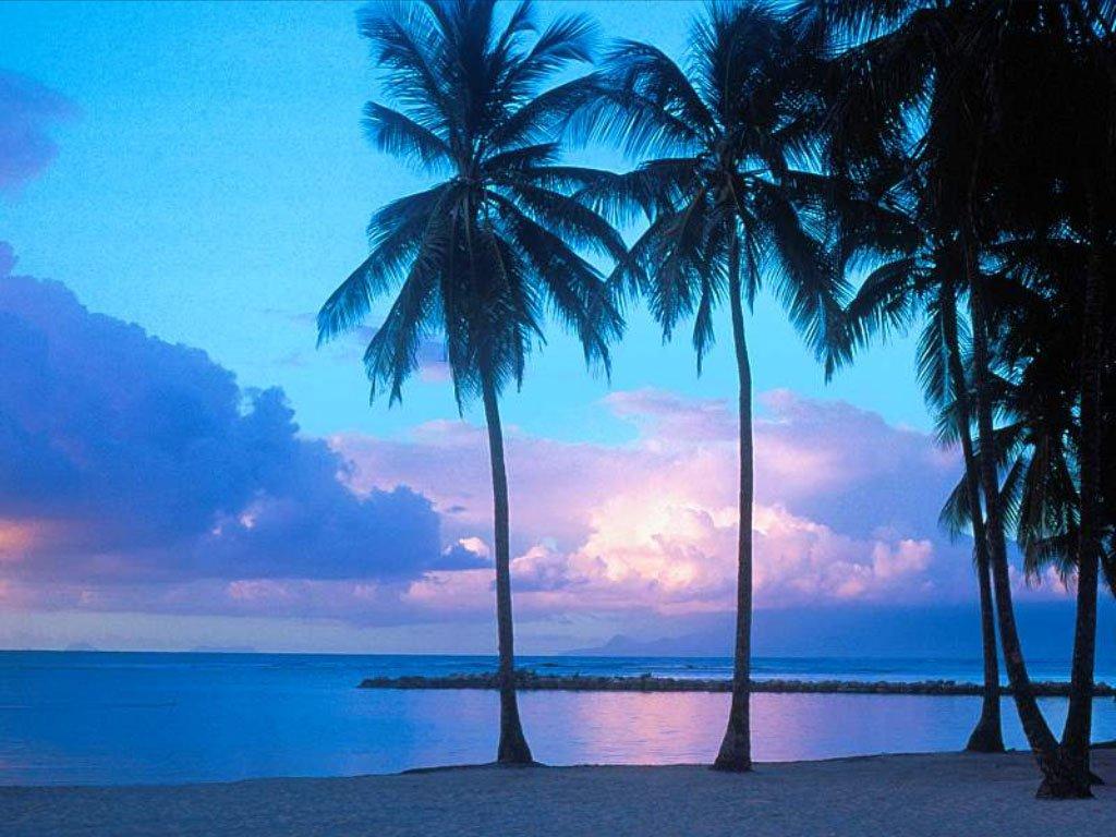 Download Wallpaper x Island Rock Reef Blue water High