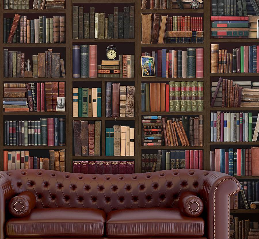 объектива более фотообои имитация книжных полок все