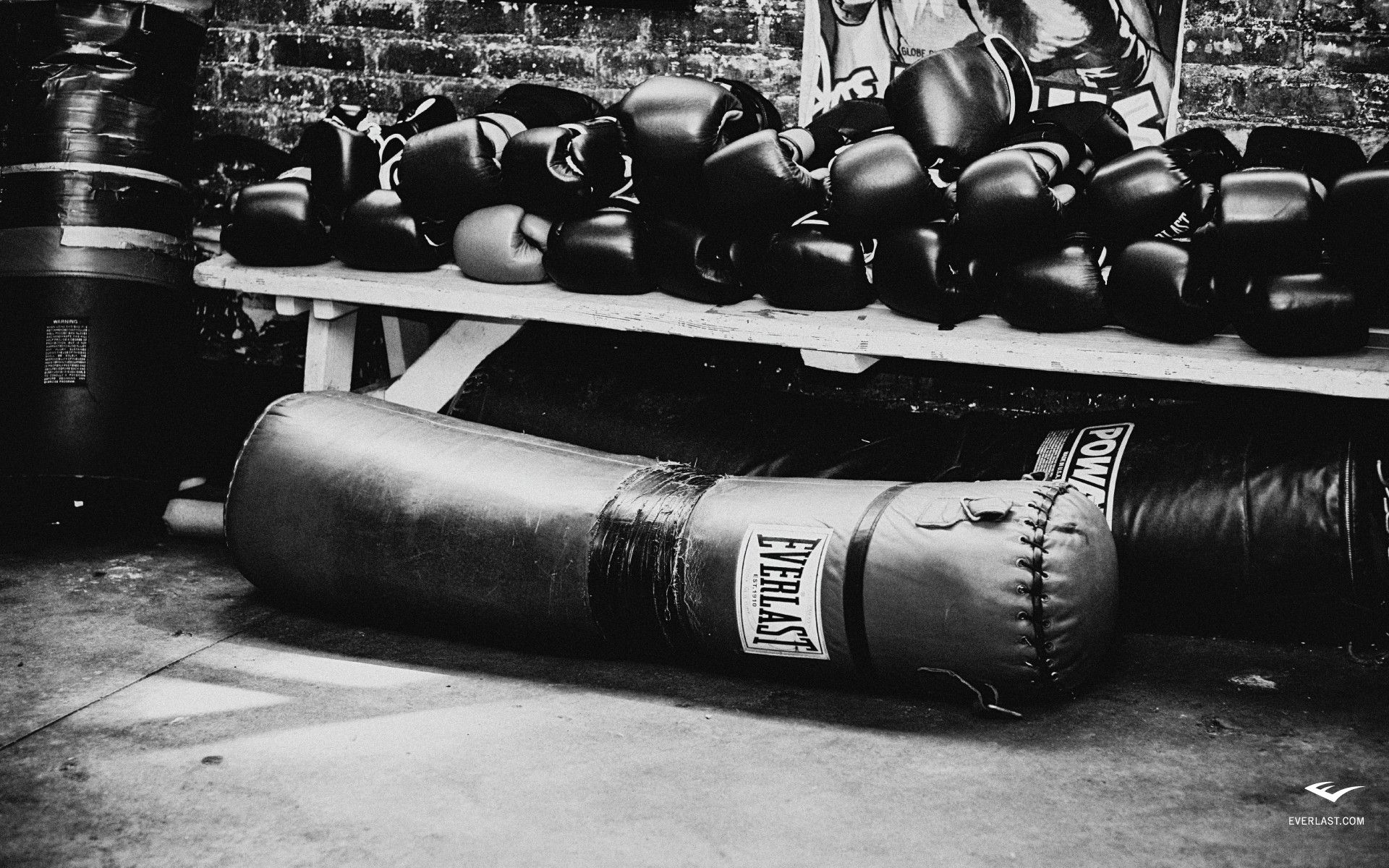 Boxing Gloves Wallpaper Cool HD Wallpapers 1920x1200