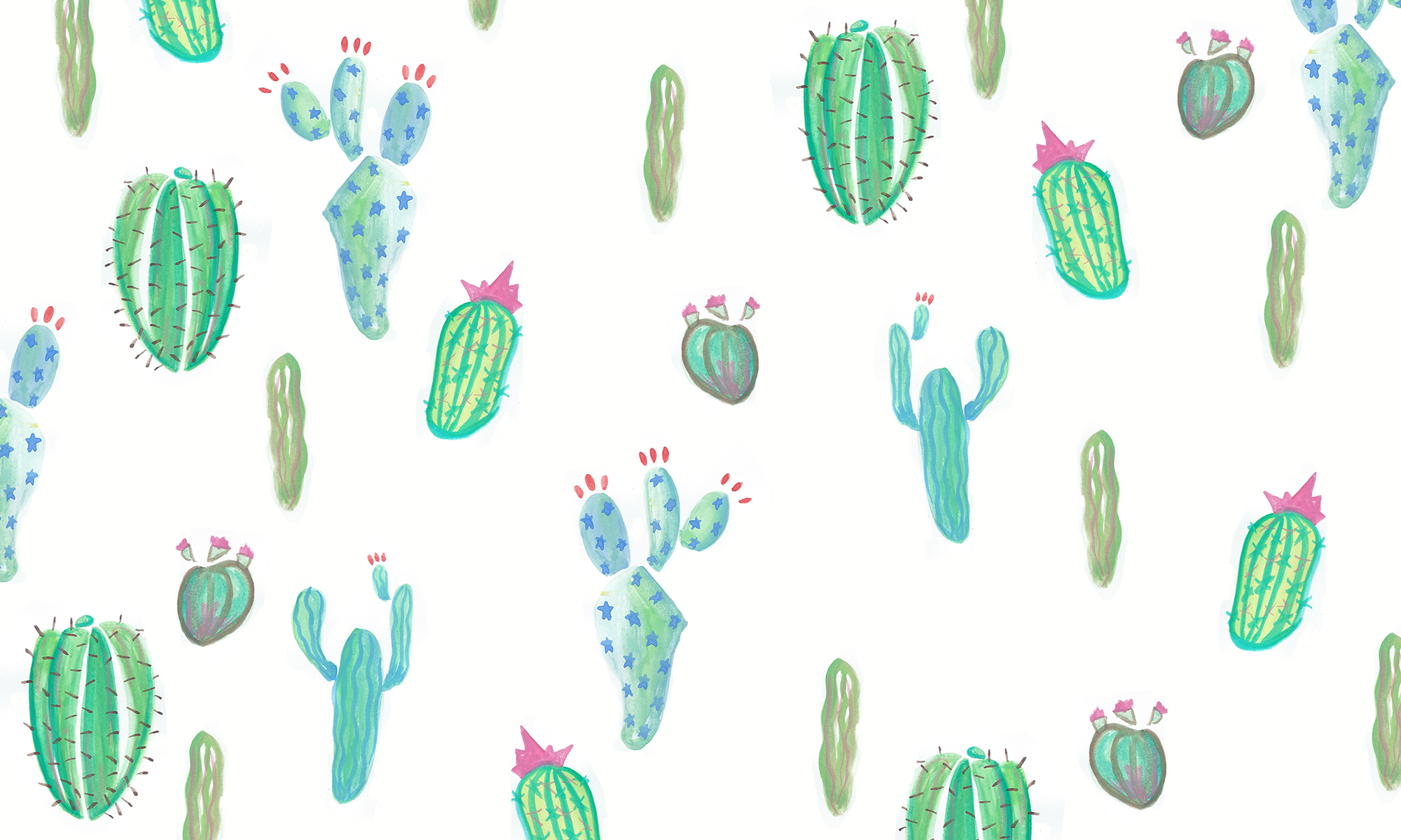 Cactus Pictures Wallpapers 31 Wallpapers Adorable Wallpapers
