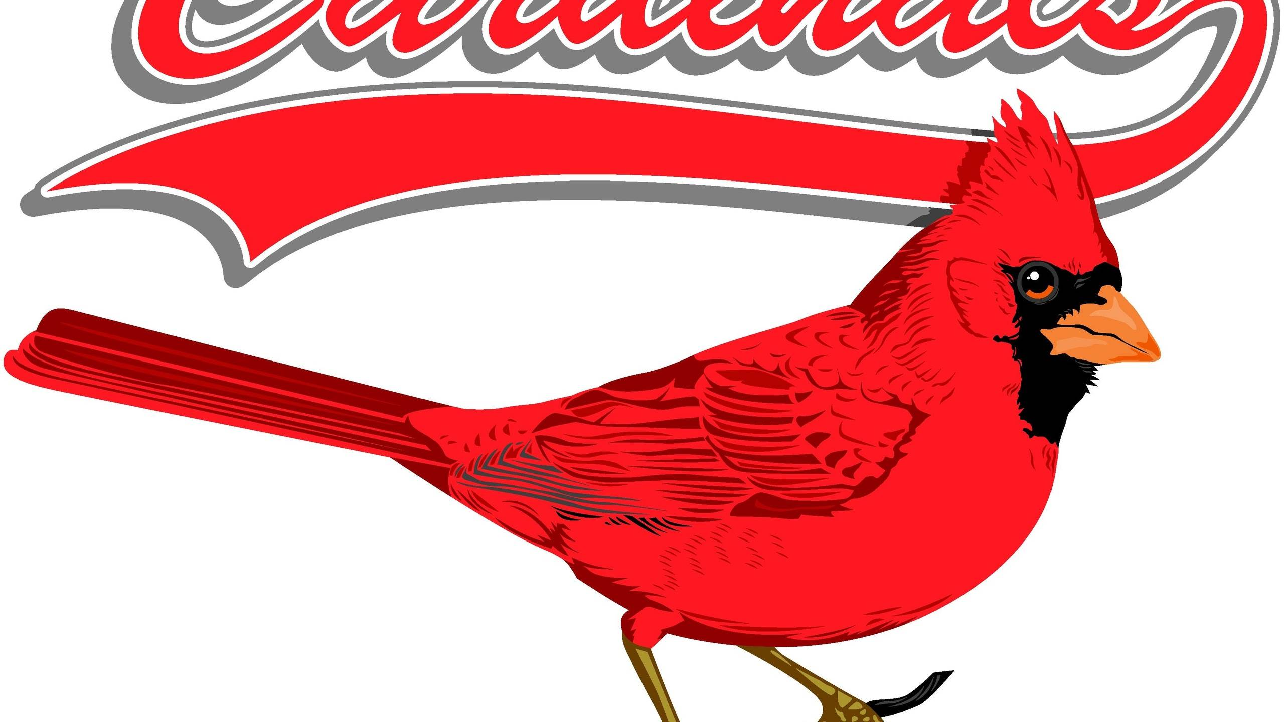 St Louis Cardinals Wallpaper Hd 2560x1440