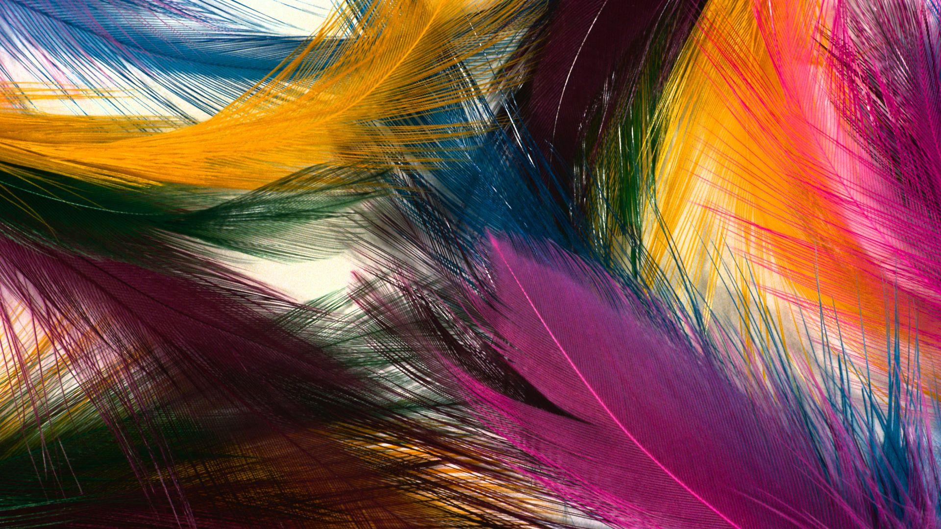 Solid Color Hd Wallpapers Pixelstalk Color Motion Iphone S