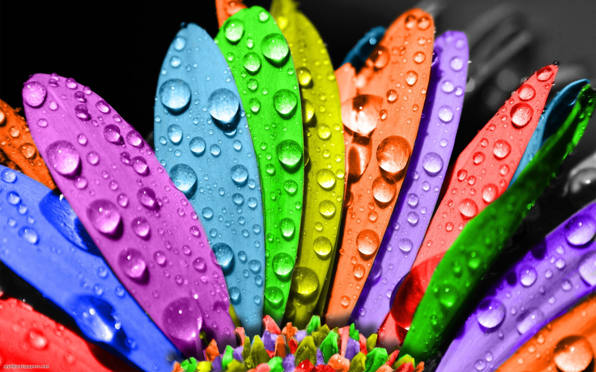 colorful backgrounds wallpapers (37 wallpapers) – adorable wallpapers