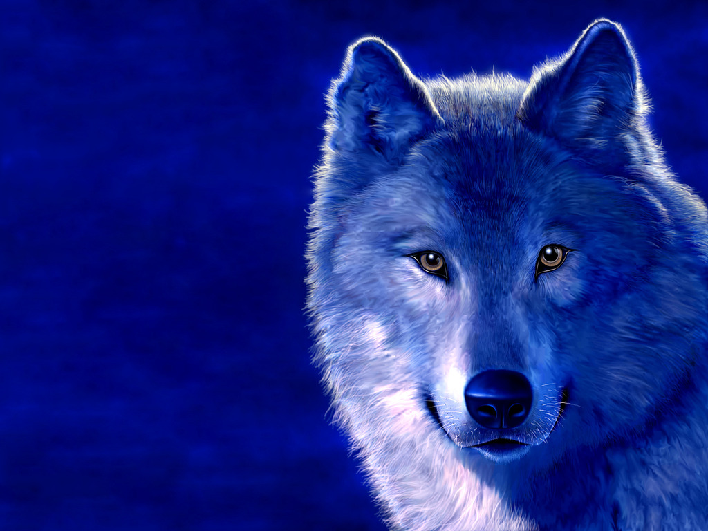 Collection Of Cool Wolf Backgrounds On Hdwallpapers 1024x768