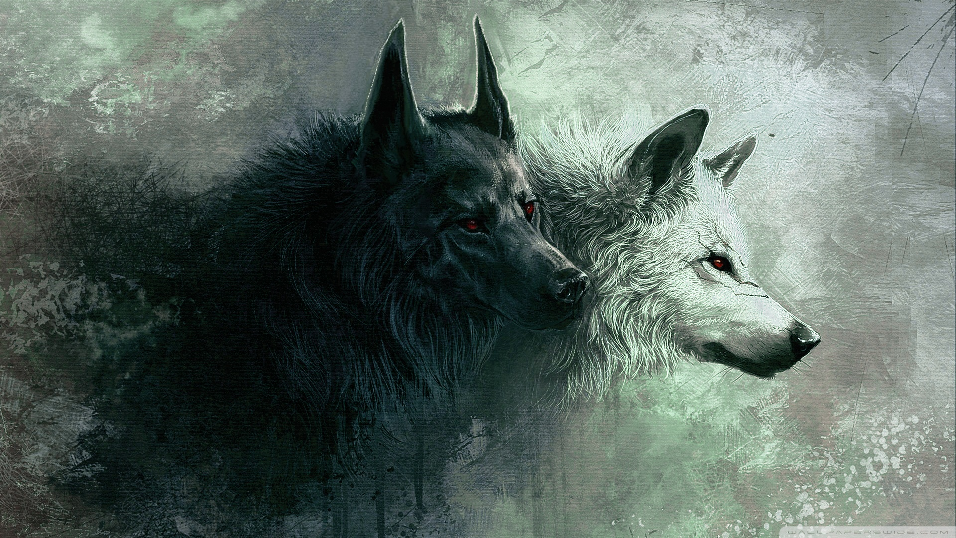 Wolf HD Wallpapers  Backgrounds  Wallpaper  1920x1080