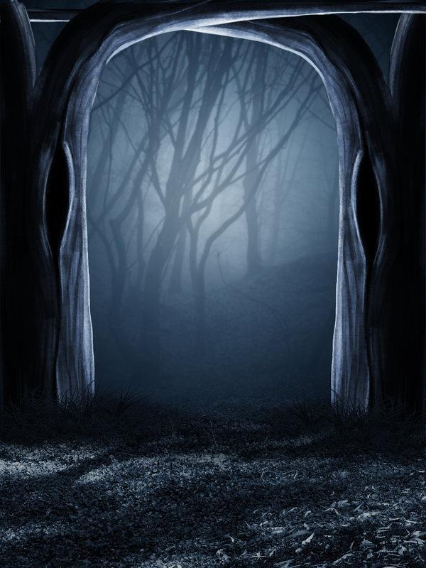 Dark Blue Drawing Room