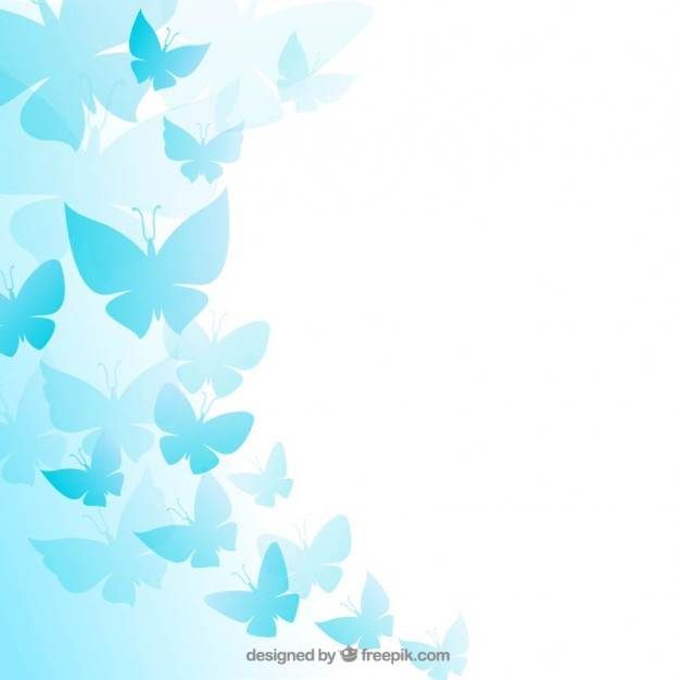 Cute Butterfly Backgrounds Wallpaper 626x626