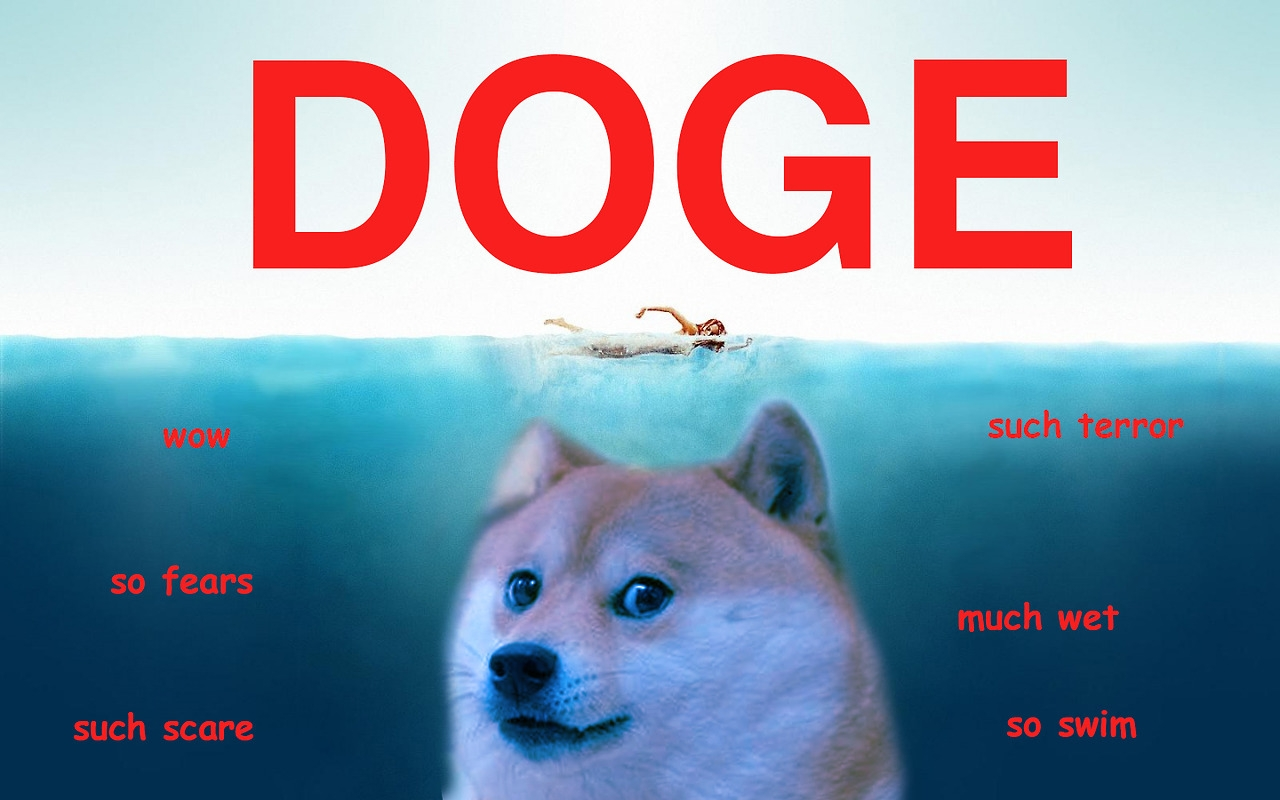 Doge Shiba Wallpaper Live FREE Android Apps On Google Play 1280x800