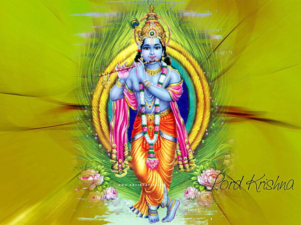 Download Lord Krishna wallpaper images28