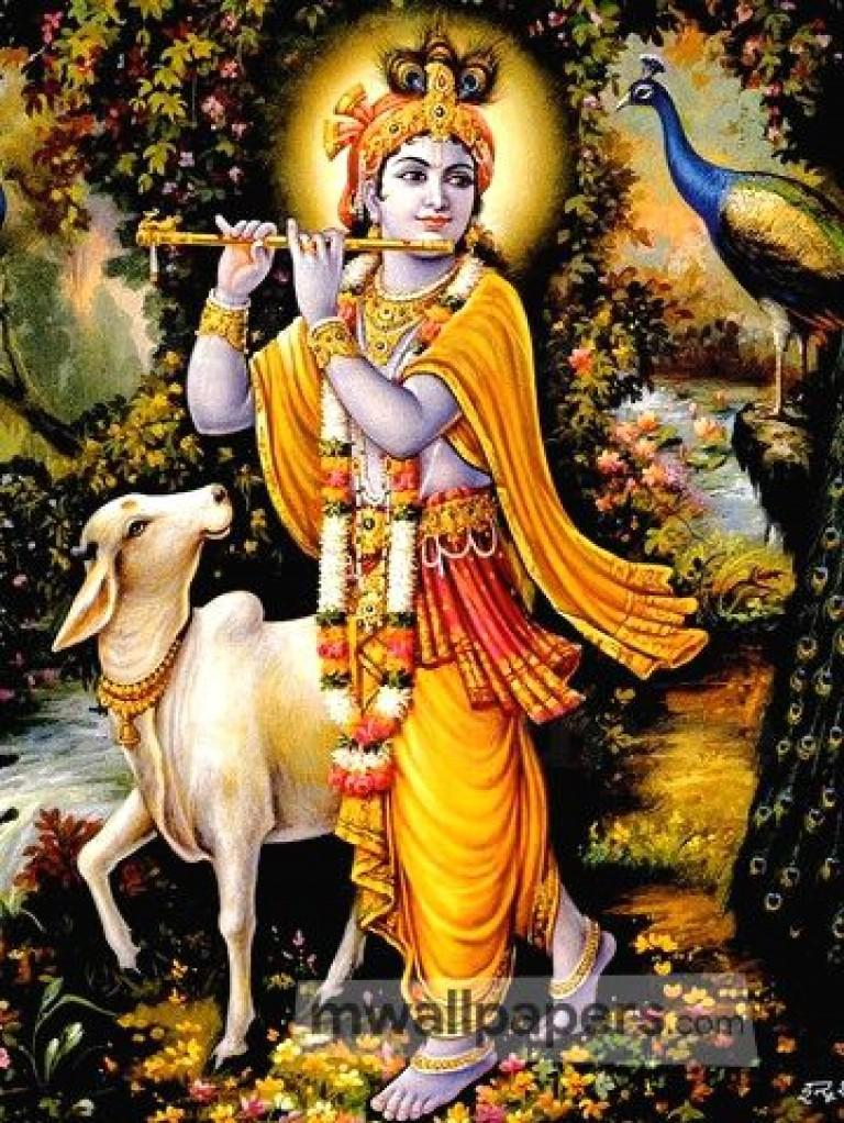 Download Lord Krishna wallpaper images88
