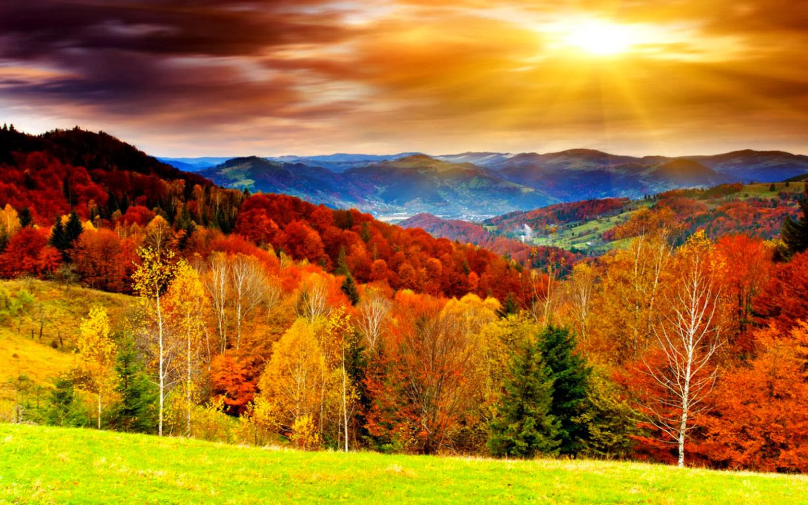Outstanding Fall Themed Desktop Backgrounds 36 Wallpapers Adorable Home Interior And Landscaping Ologienasavecom
