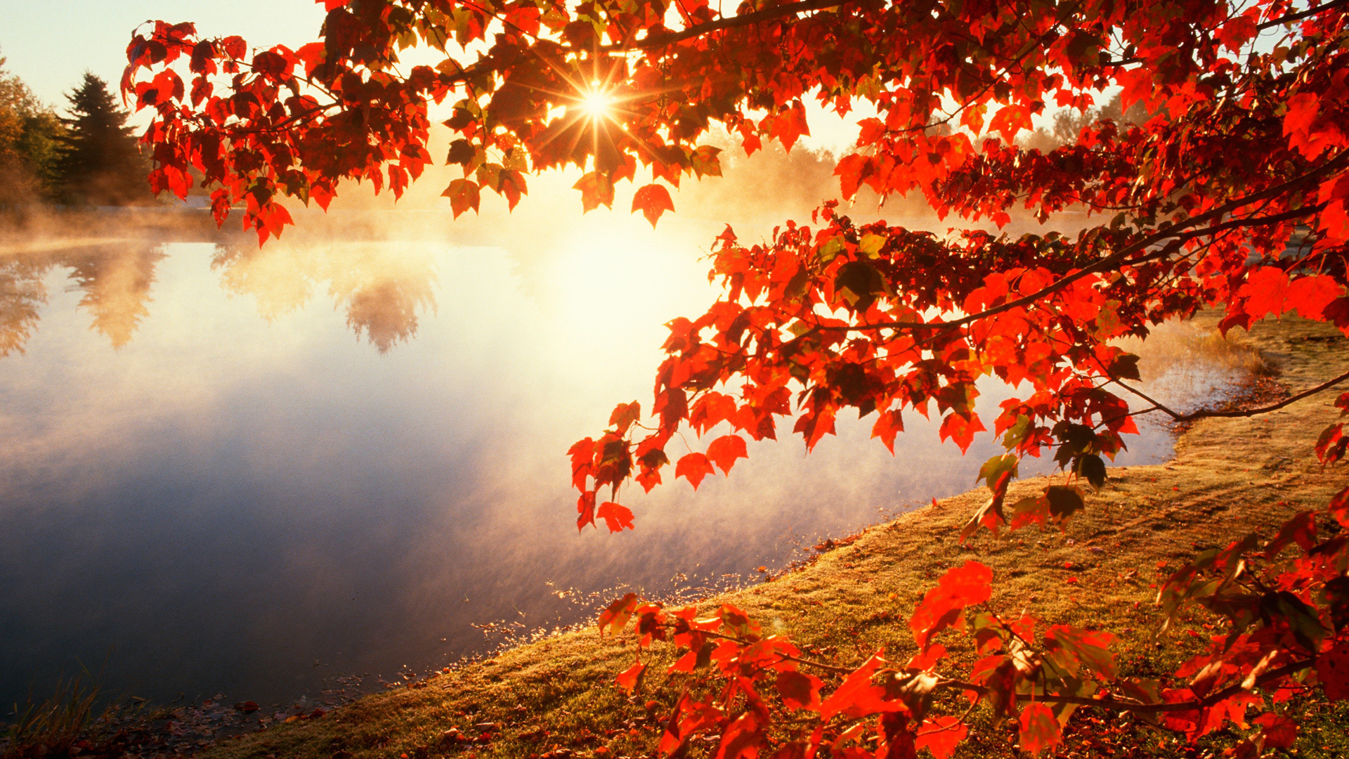 collection of autumn desktop wallpaper free on hdwallpapers 1920a—1080
