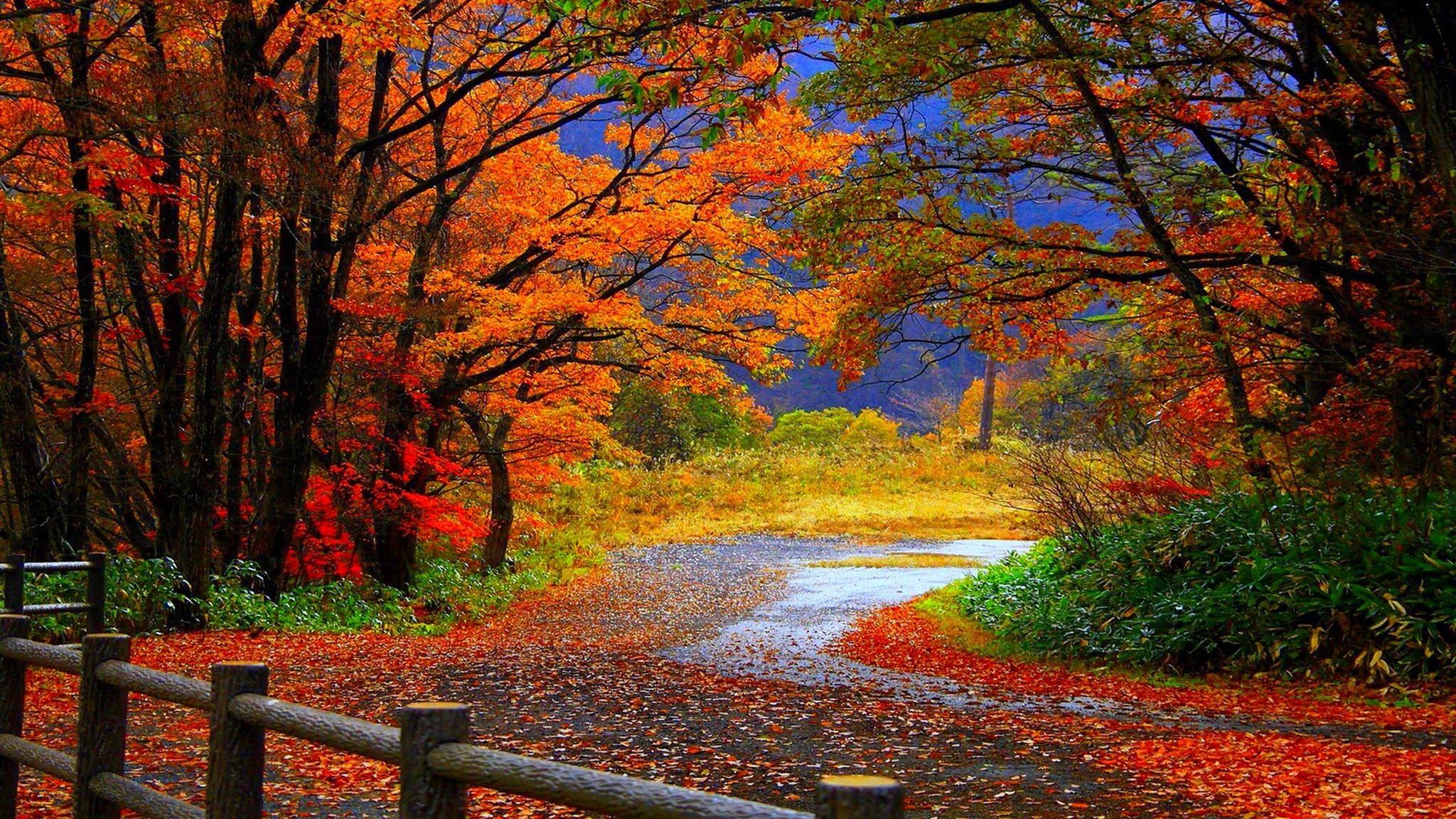 Autumn Screensaver For Mac Screensaver For