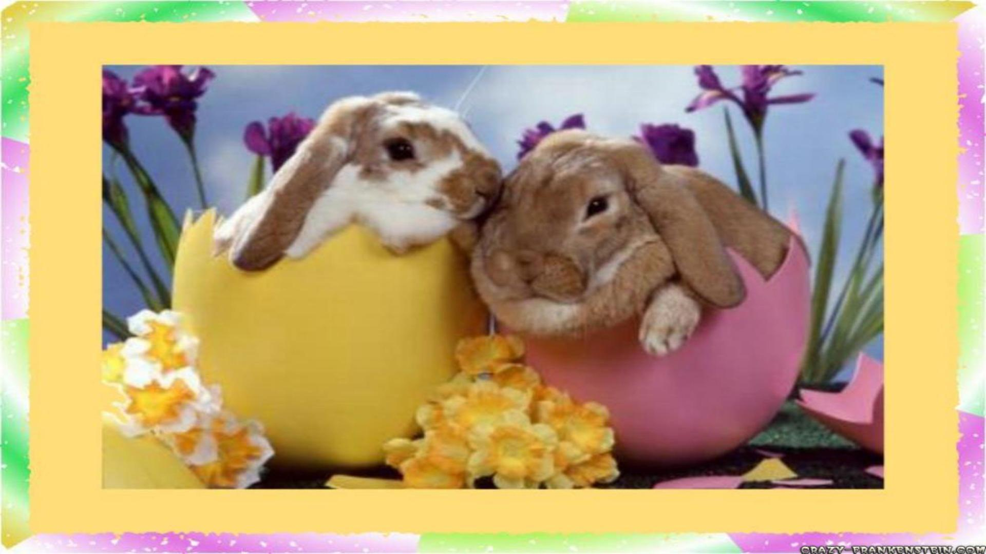 Easter Wallpapers Android Apps On Google Play 1920x1080