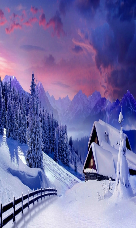 Beautiful Winter Nature Picture