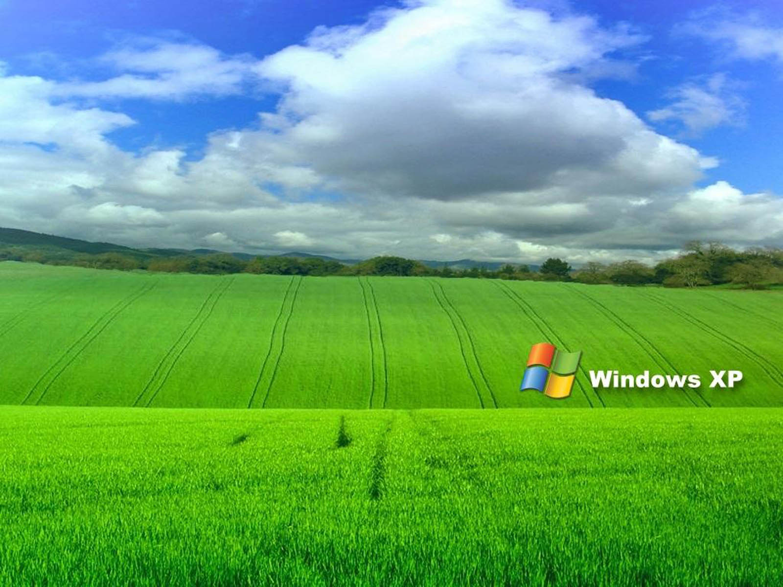 funny windows backgrounds 031