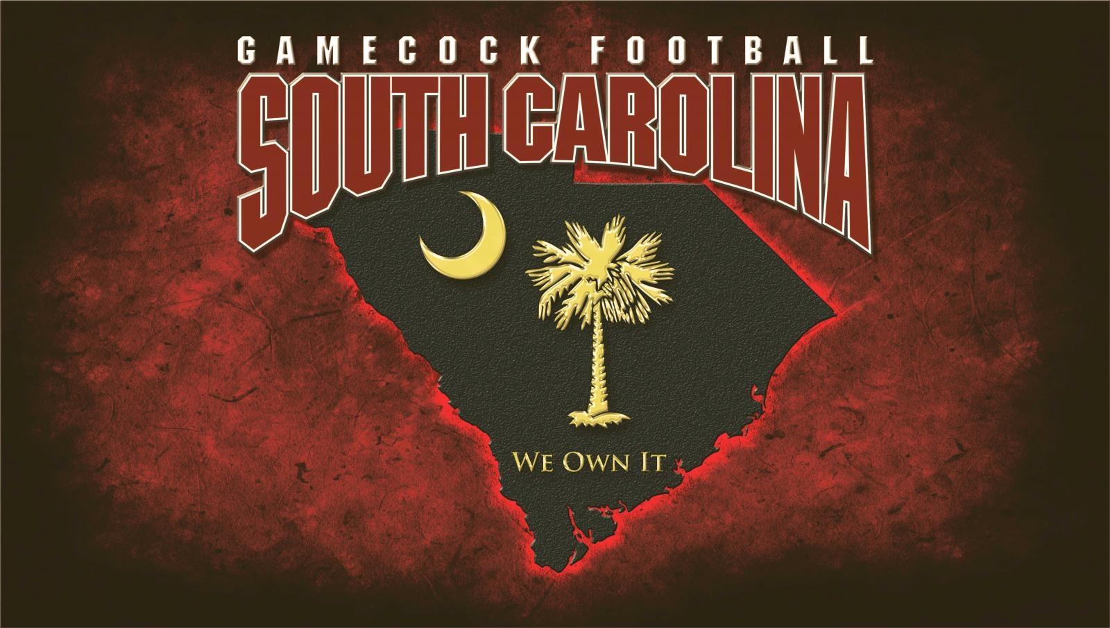 south carolina gamecocks desktop wallpaper - photo #6