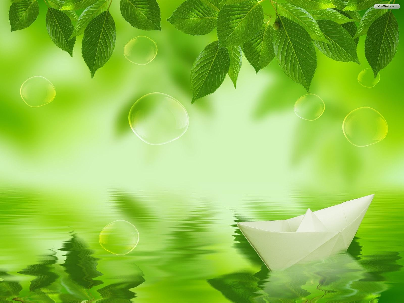 Green Backgrounds Free Desktop HD Wallpapers Hdwaly Blue and Green