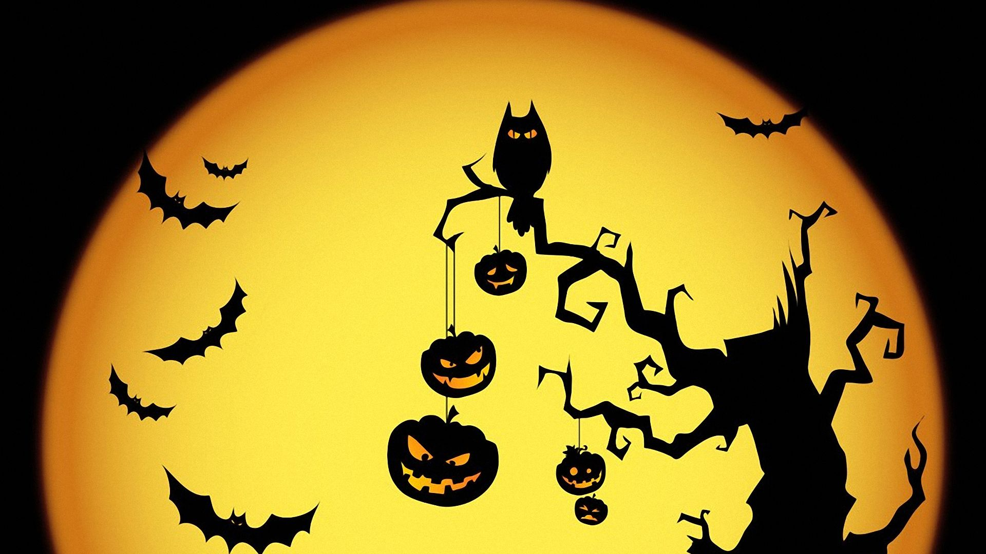 Magical Witch Treat Wallpaper Halloween Magical Treat Desktop