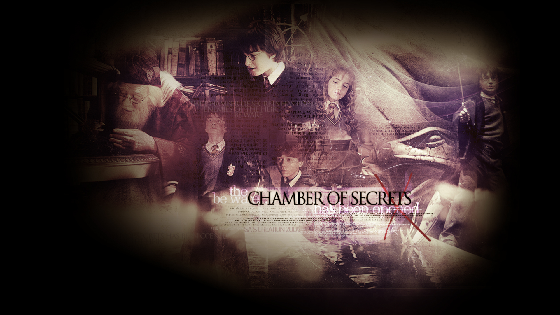 Harry Potter And The Chamber Of Secrets Wallpaper 1920x1080