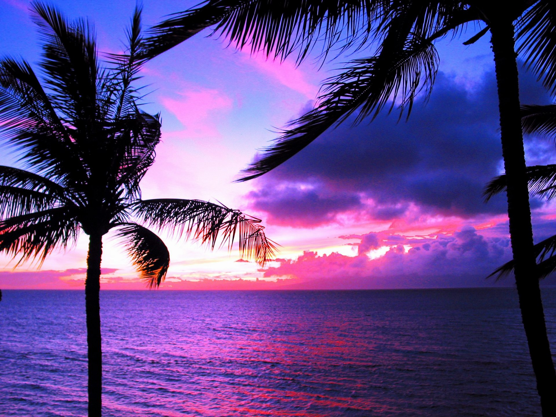 Nature Hawaii Wallpapers Hd Pixelstalk Hawaii Surf Wallpaper
