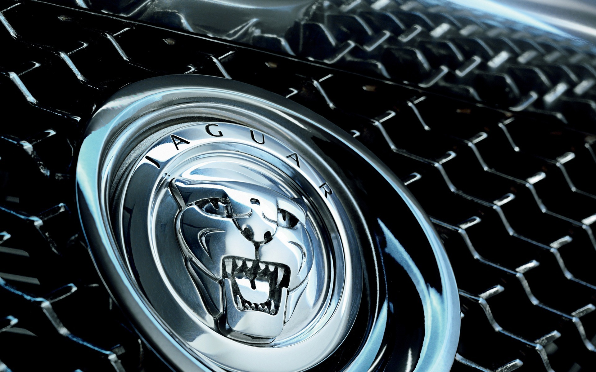 Jaguar Images Wallpa.