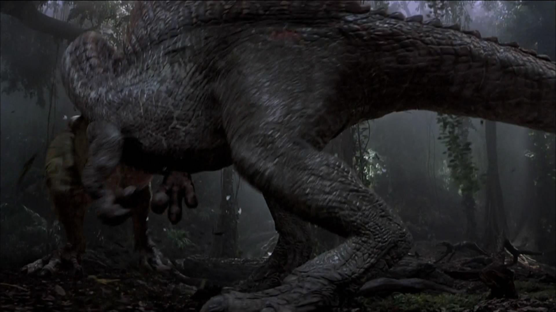 Jurassic Park Poster Wallpaper Jurassic Park Movie Wallpapers