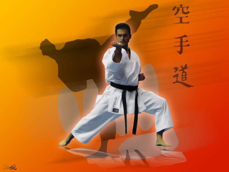 Shotokan Karate Download HD Wallpapers and Free Images 751x563