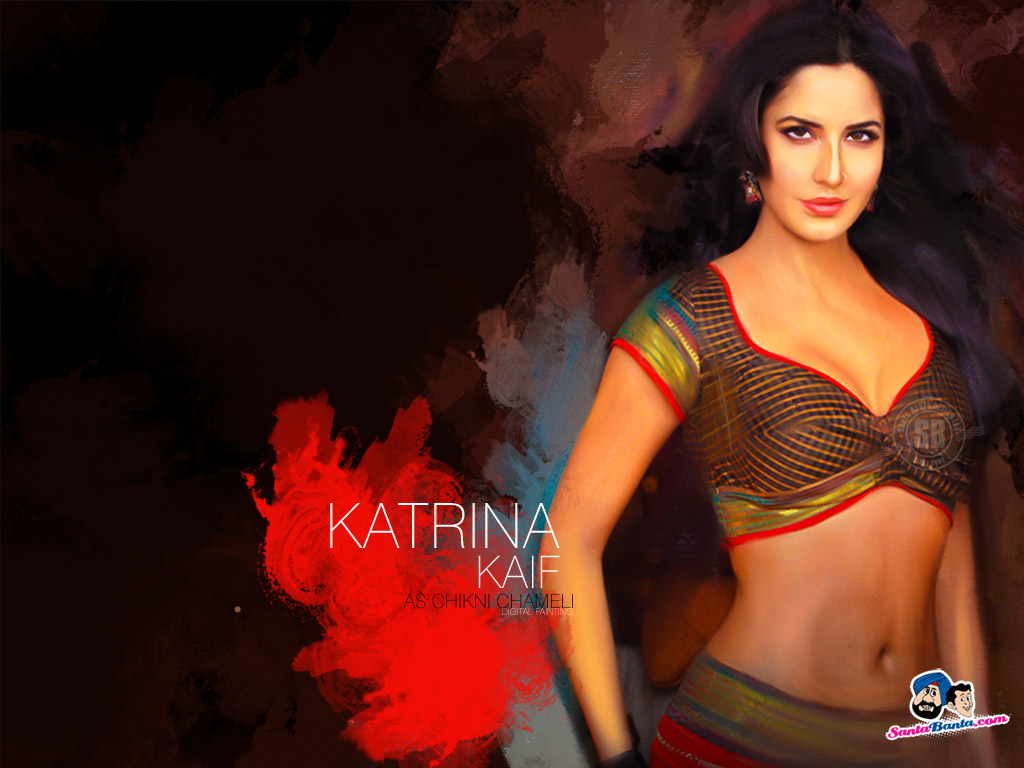 Katrina Kaif Best Wallpapers  Image Wallpapers 1024x768