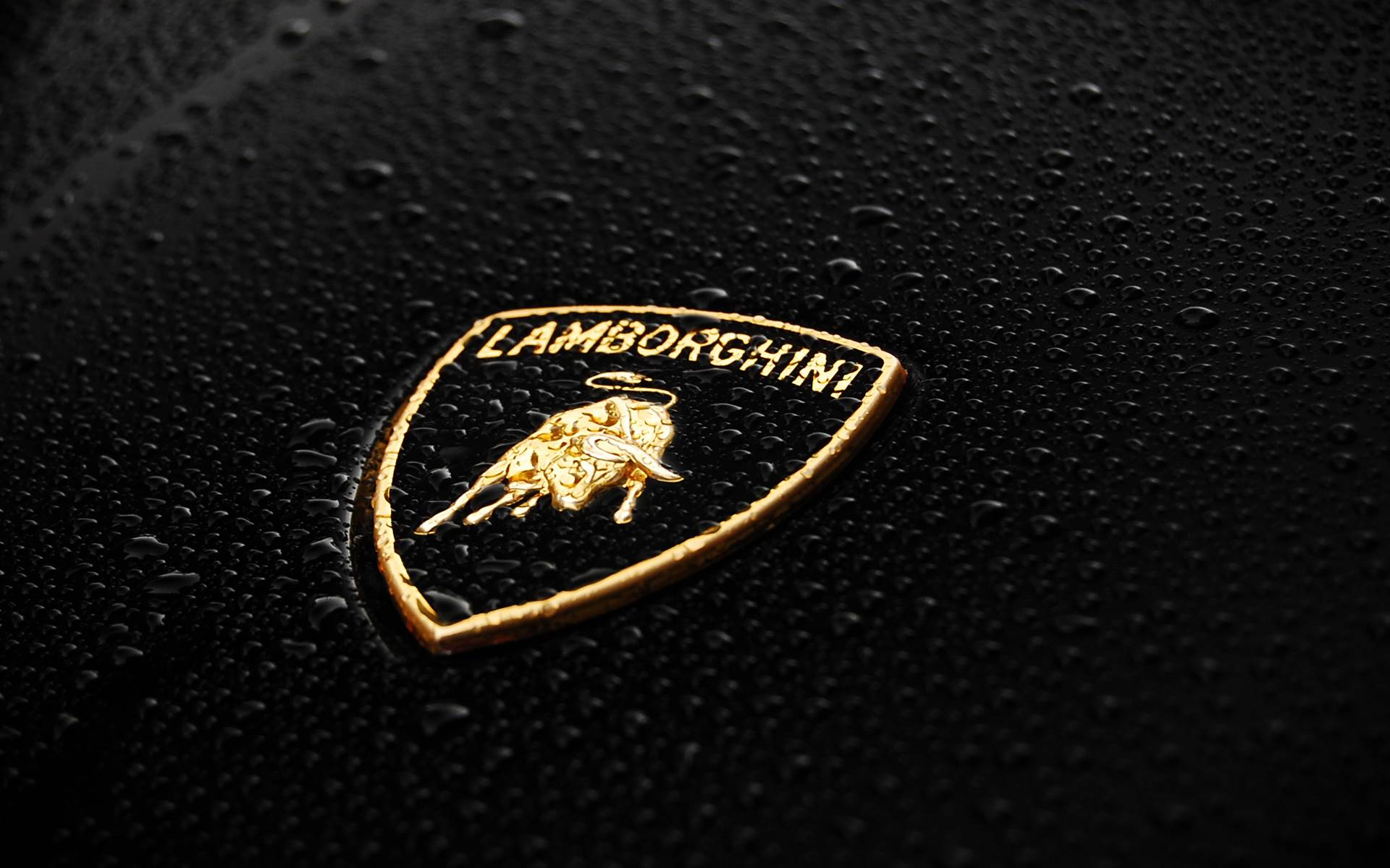 Yellow Lamborghini Aventador Wallpaper Hd Car Wallpapers 1920x1200