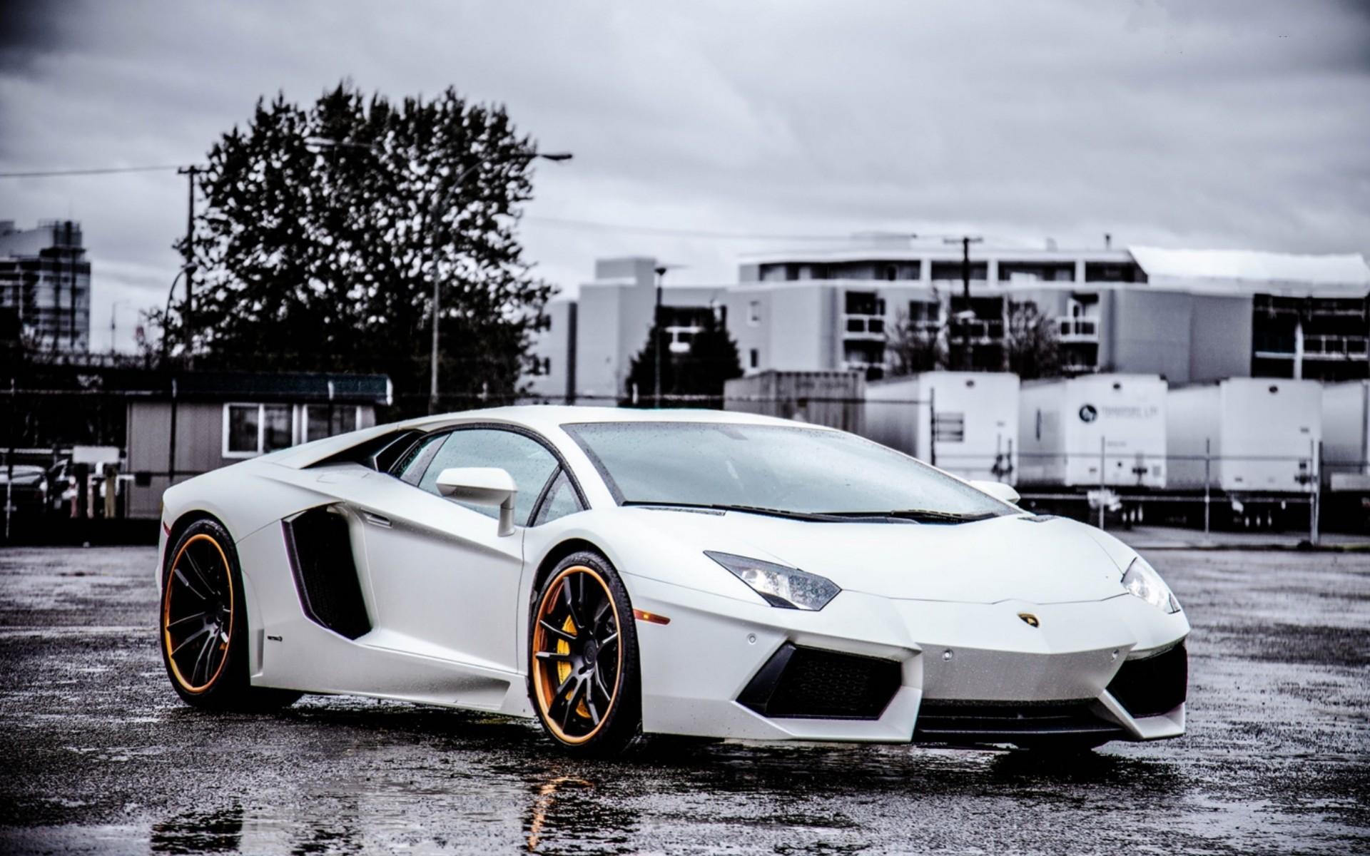 Download Wallpaper Of Lamborghini Gallery 1920x1200