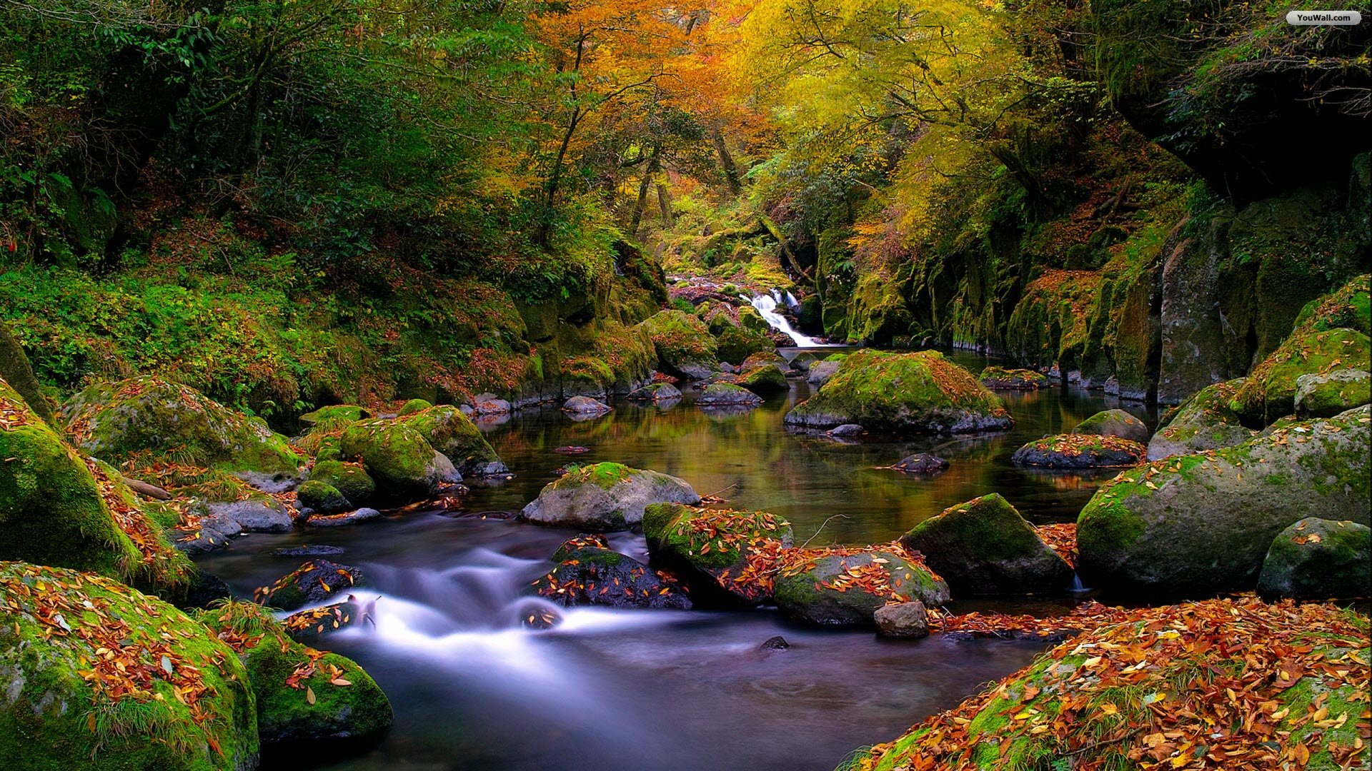 Mountain Spring Landscape Hd Desktop Wallpaper Widescreen