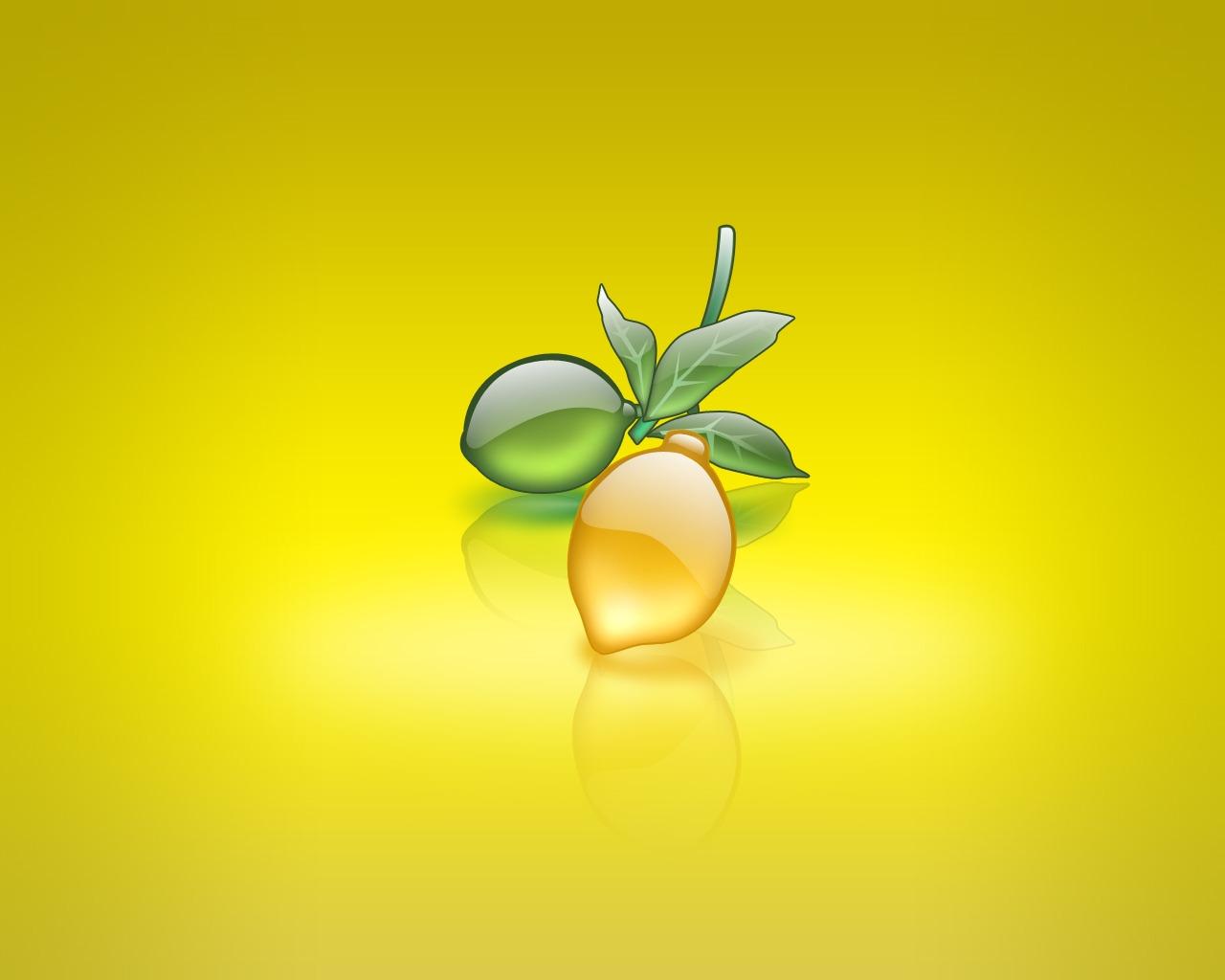 Download Wallpaper 720x1280 Lemon, Citrus, Sliced Samsung Galaxy ...