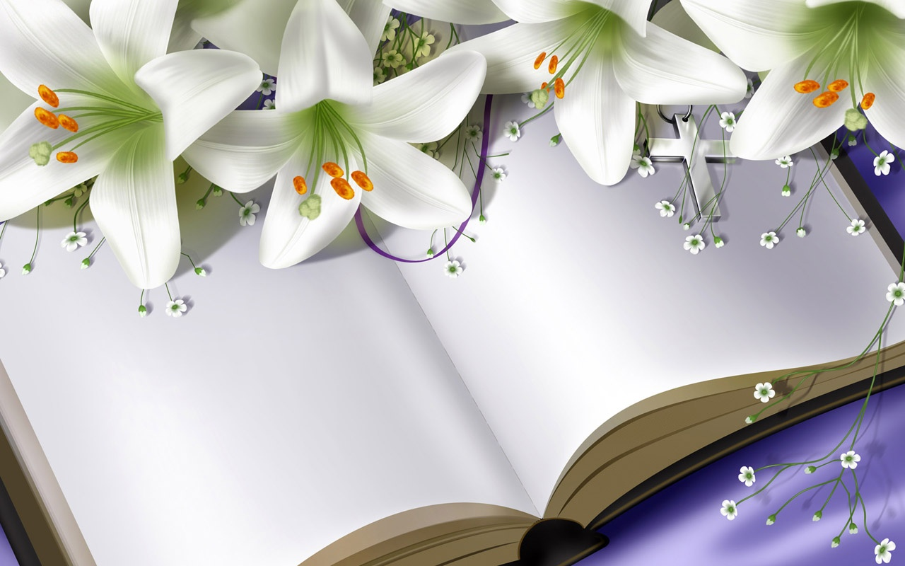 https://avante.biz/wp-content/uploads/Lily-Flower-Images-Wallpapers/Lily-Flower-Images-Wallpapers-016.jpg